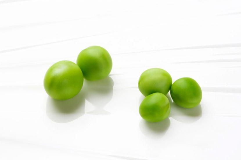 古典的なモデル生物、エンドウ豆