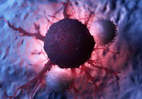がん細胞と白血球